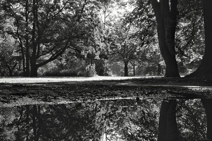 Humboldhain Berlin Foto Ron Kirchner
