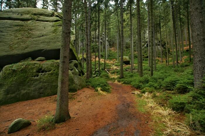 Malerweg Elbsandsteingebirge Ron Kirchner Foto